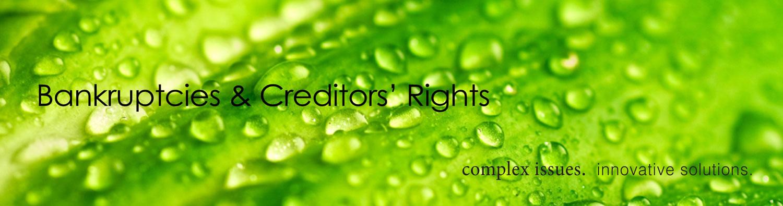 Banner-Bankruptcies-Creditors-Rights