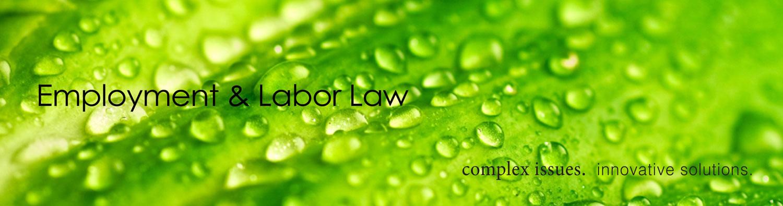 Banner-Employment-&-Labor-Law